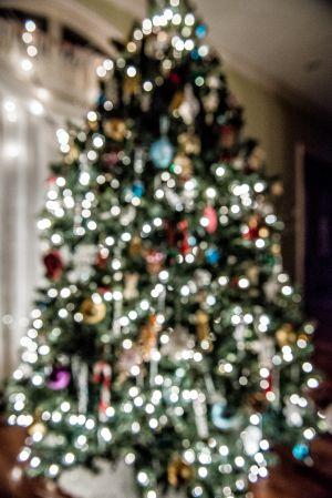 ChristmasTree_018.jpg