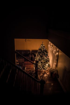ChristmasTree_030.jpg